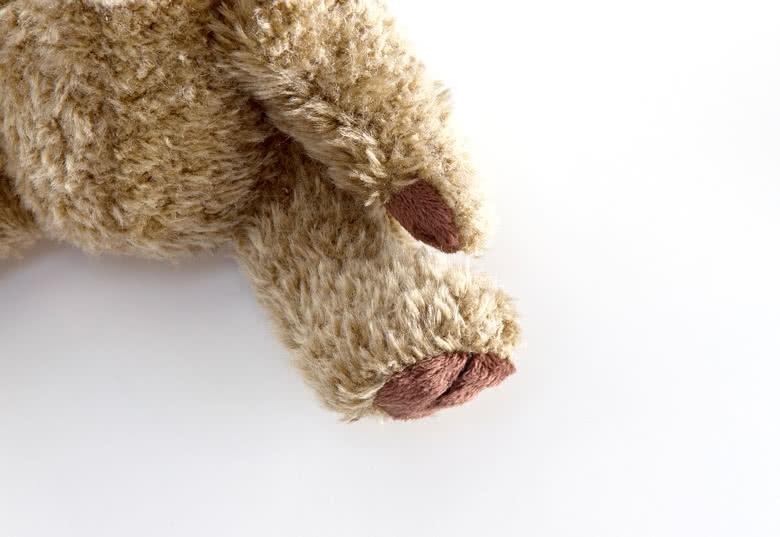 Details van teddybeer